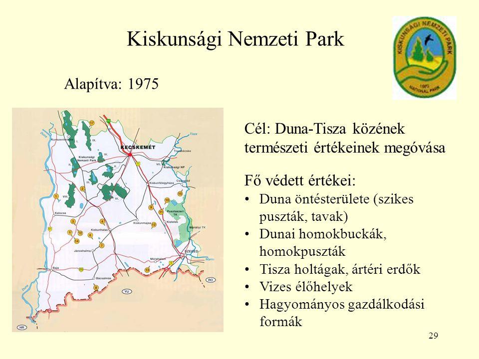 29 Kiskunsági Nemzeti Park Alapítva: 1975 Cél: Duna-Tisza közének természeti értékeinek megóvása Fő védett értékei: Duna öntésterülete (szikes puszták