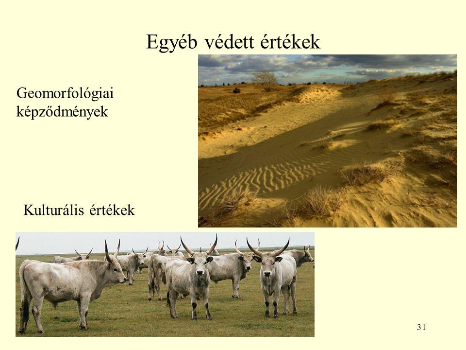 31 Egyéb védett értékek Geomorfológiai képződmények Kulturális értékek