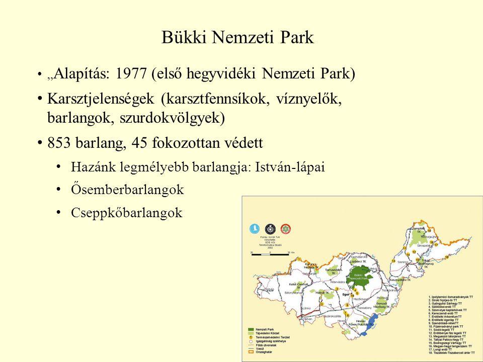 """40 Bükki Nemzeti Park """" Alapítás: 1977 (első hegyvidéki Nemzeti Park) Karsztjelenségek (karsztfennsíkok, víznyelők, barlangok, szurdokvölgyek) 853 bar"""