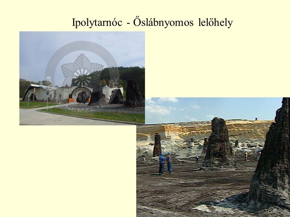 43 Ipolytarnóc - Őslábnyomos lelőhely