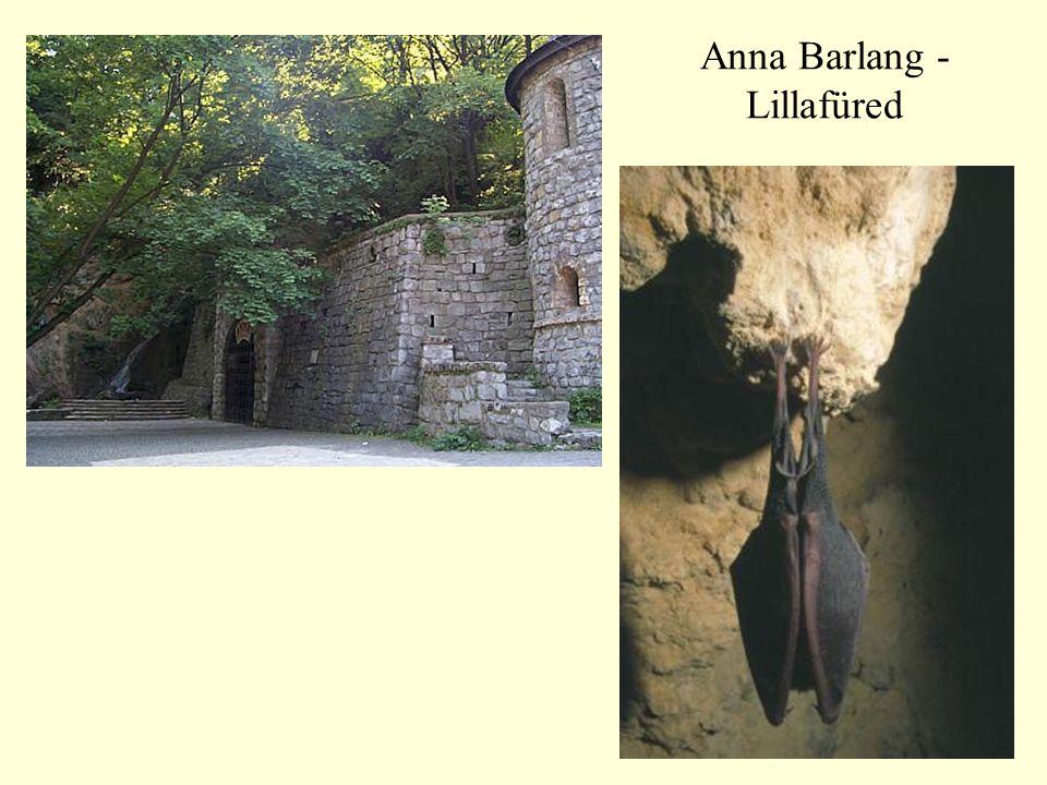 47 Anna Barlang - Lillafüred
