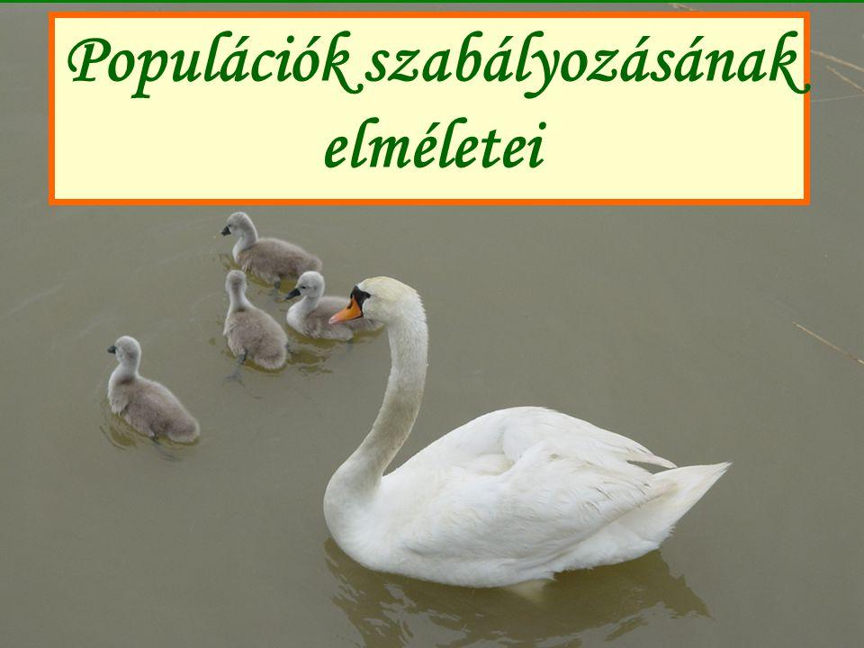 Populációk szabályozásának elméletei