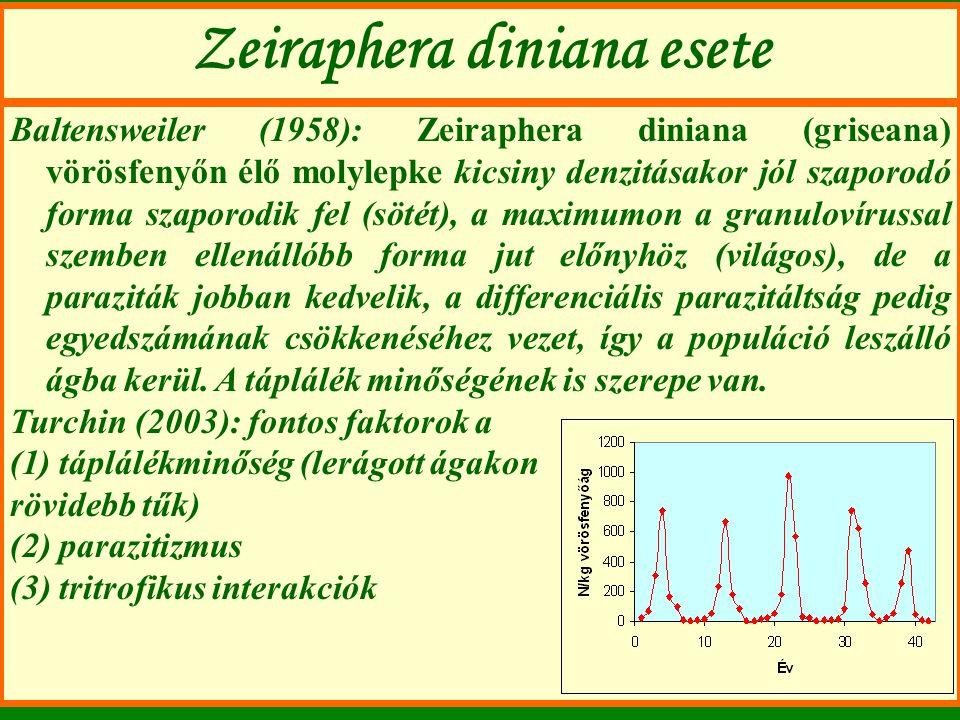 Zeiraphera diniana esete Baltensweiler (1958): Zeiraphera diniana (griseana) vörösfenyőn élő molylepke kicsiny denzitásakor jól szaporodó forma szapor