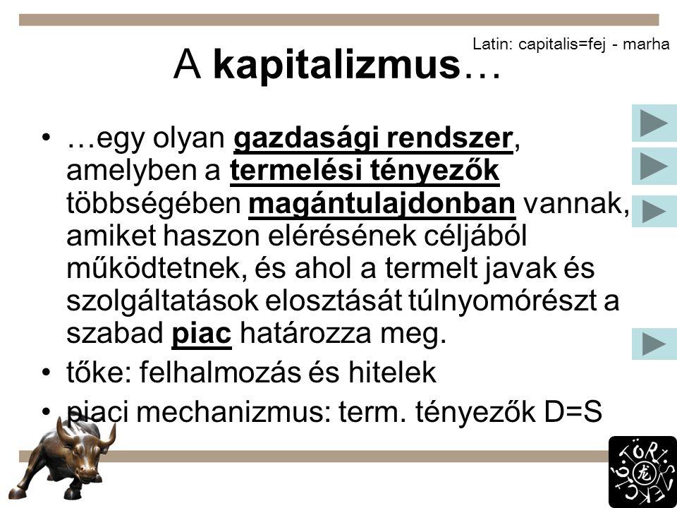 Gazdaságpolitika Merkantilizmus: XIV.