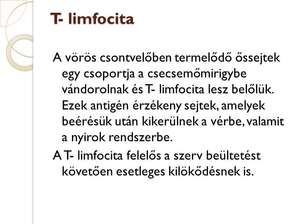 T- limfocita A vörös csontvelőben termelődő őssejtek egy csoportja a csecsemőmirigybe vándorolnak és T- limfocita lesz belőlük. Ezek antigén érzékeny