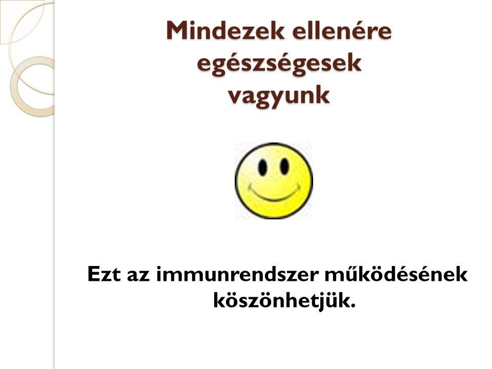 Mindezek ellenére egészségesek vagyunk Ezt az immunrendszer működésének köszönhetjük.