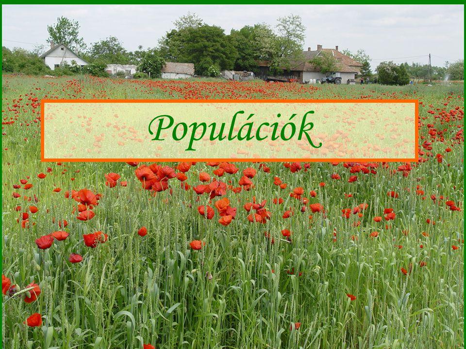Populációk