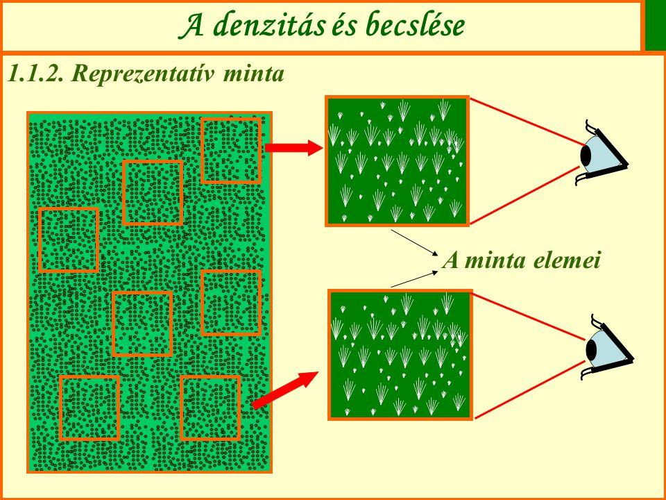 A denzitás és becslése 1.1.2. Reprezentatív minta A minta elemei