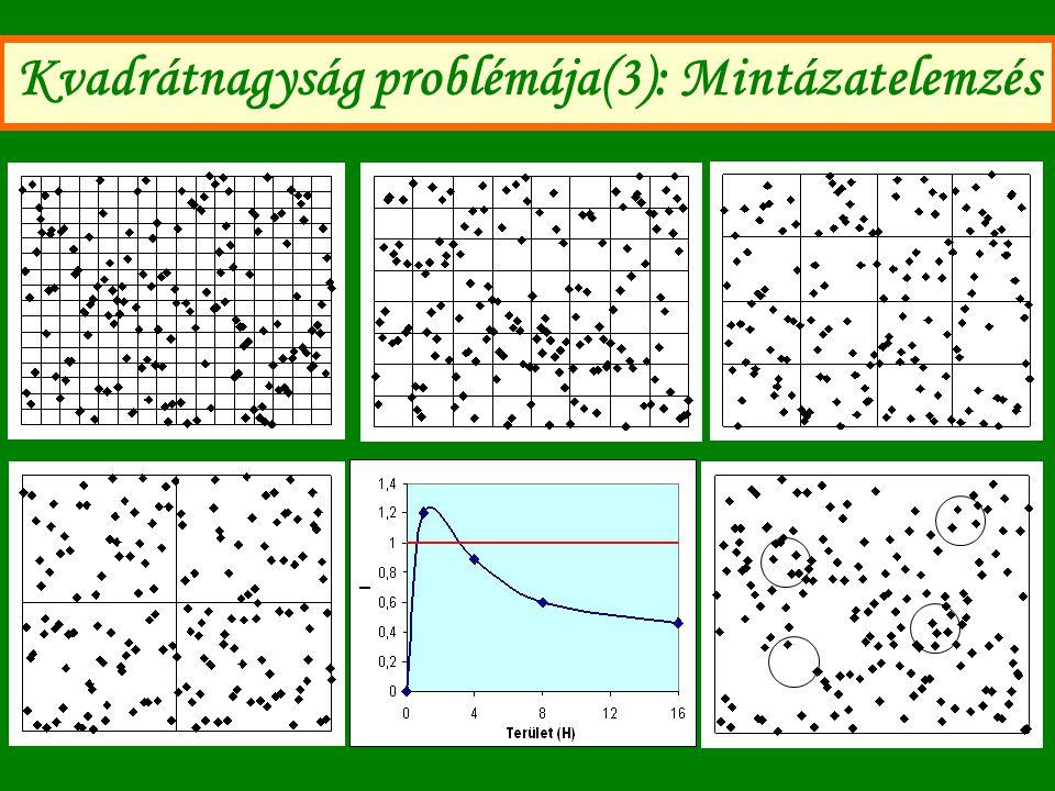 Kvadrátnagyság problémája(3): Mintázatelemzés