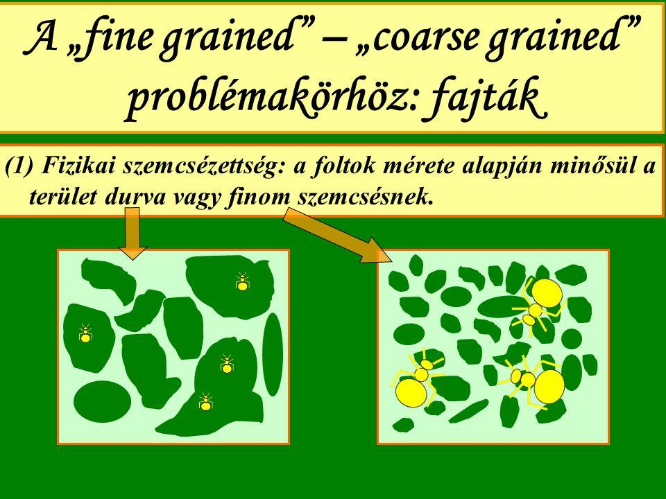 """A """"fine grained"""" – """"coarse grained"""" problémakörhöz: fajták (1) Fizikai szemcsézettség: a foltok mérete alapján minősül a terület durva vagy finom szem"""