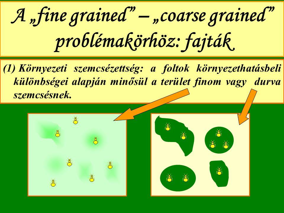 """A """"fine grained"""" – """"coarse grained"""" problémakörhöz: fajták (1) Környezeti szemcsézettség: a foltok környezethatásbeli különbségei alapján minősül a te"""