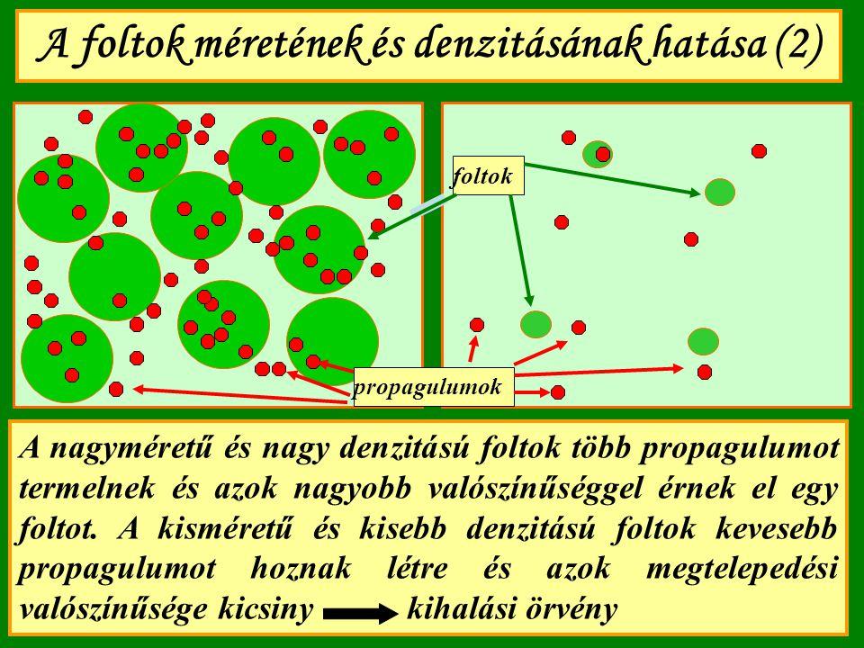 A foltok méretének és denzitásának hatása (2) A nagyméretű és nagy denzitású foltok több propagulumot termelnek és azok nagyobb valószínűséggel érnek