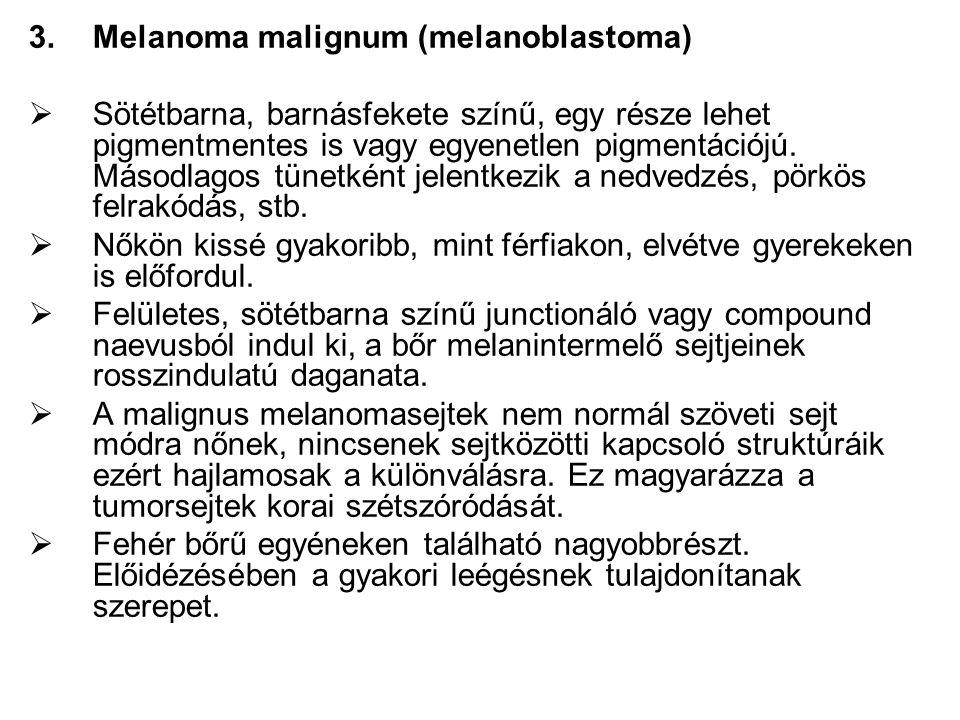 3.Melanoma malignum (melanoblastoma)  Sötétbarna, barnásfekete színű, egy része lehet pigmentmentes is vagy egyenetlen pigmentációjú.