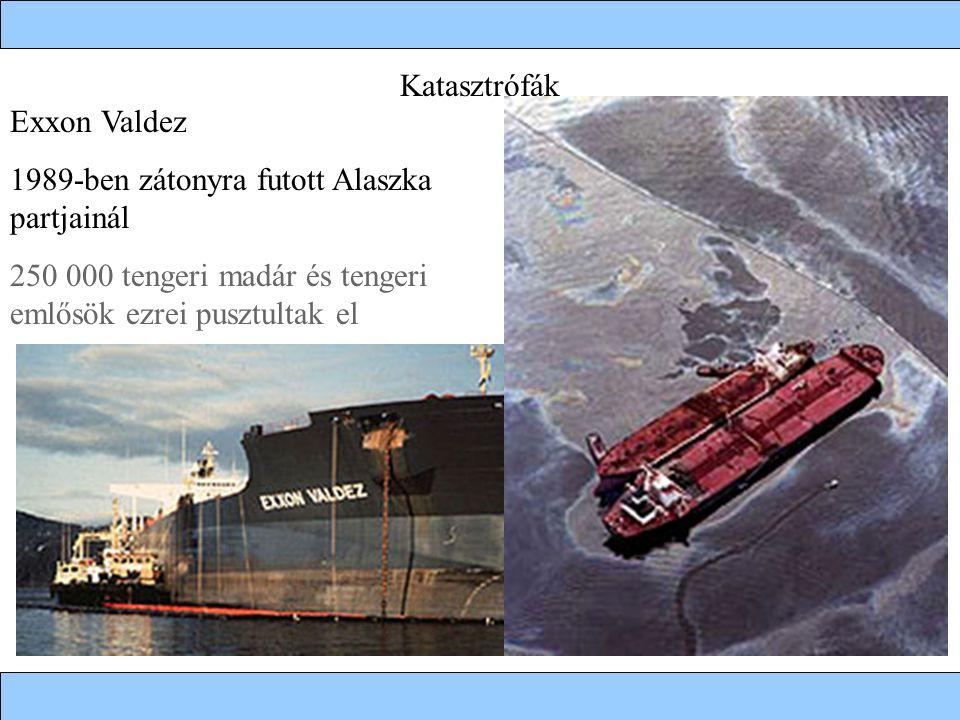 Katasztrófák Exxon Valdez 1989-ben zátonyra futott Alaszka partjainál 250 000 tengeri madár és tengeri emlősök ezrei pusztultak el