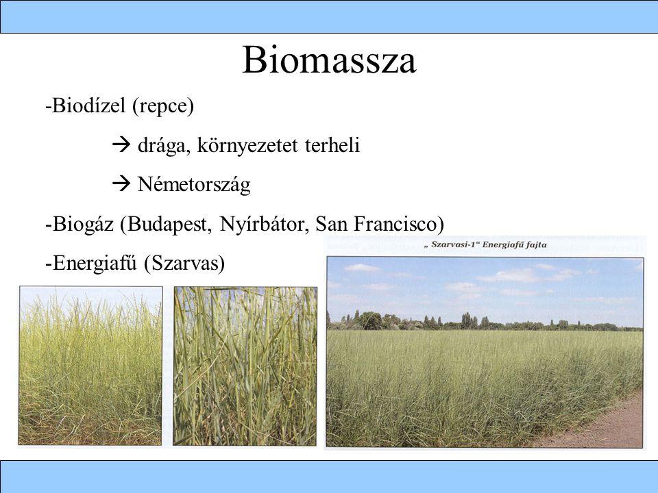 Biomassza -Biodízel (repce)  drága, környezetet terheli  Németország -Biogáz (Budapest, Nyírbátor, San Francisco) -Energiafű (Szarvas)
