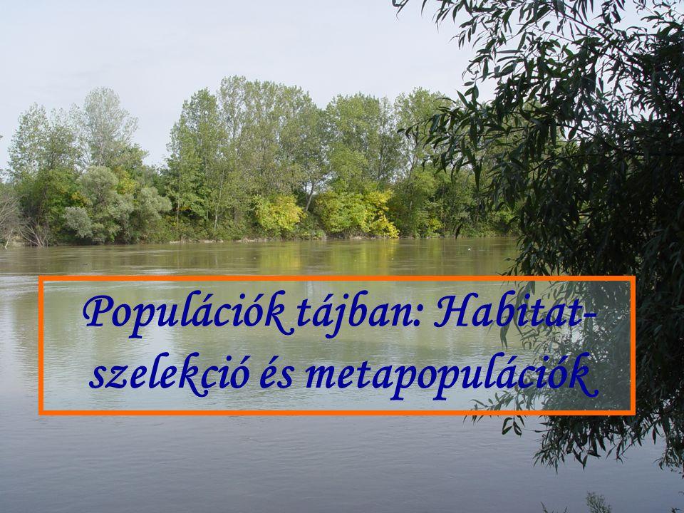 Adott tájban milyen kritériumok alapján választ élőhelyet egy populáció vagy közösség.