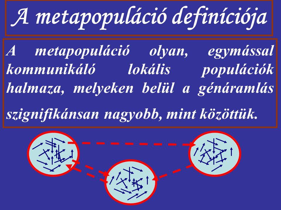 A metapopuláció definíciója A metapopuláció olyan, egymással kommunikáló lokális populációk halmaza, melyeken belül a génáramlás szignifikánsan nagyob