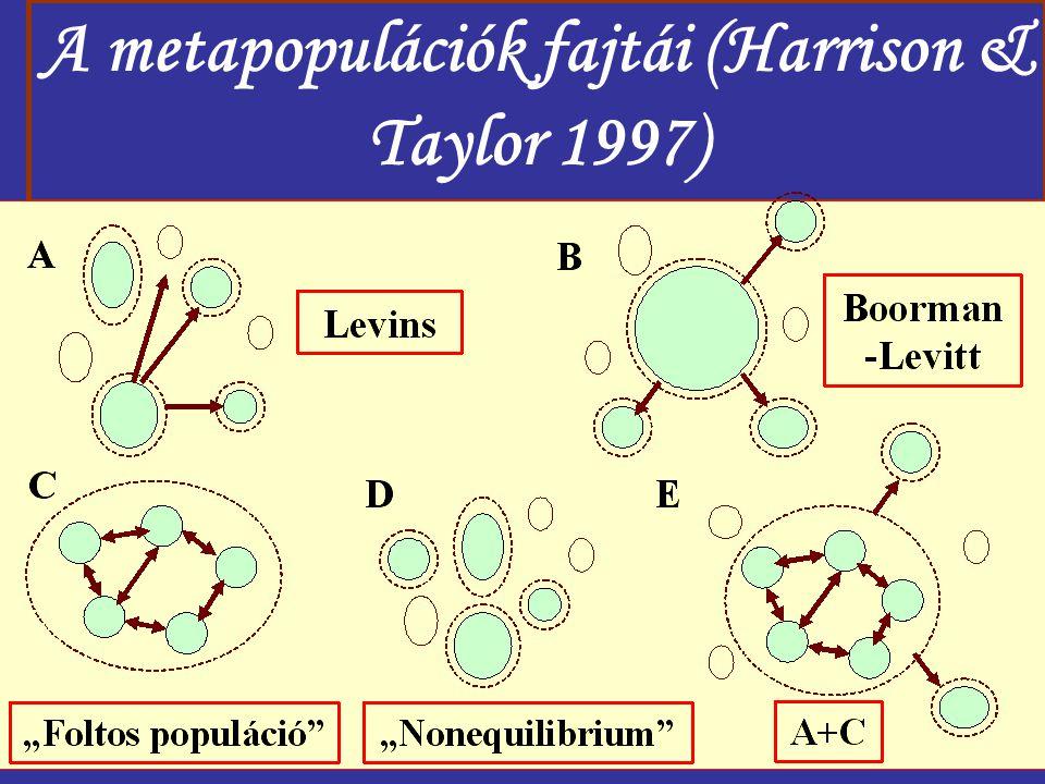 A metapopulációk fajtái (Harrison & Taylor 1997)