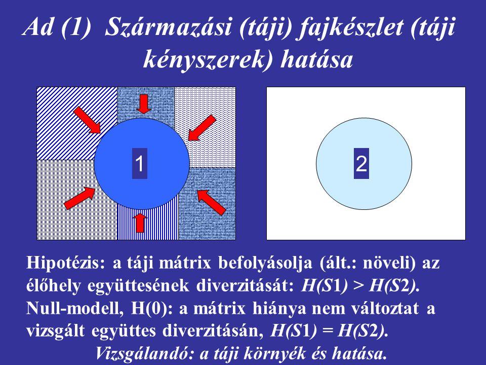 Ad (1) Származási (táji) fajkészlet (táji kényszerek) hatása 12 Hipotézis: a táji mátrix befolyásolja (ált.: növeli) az élőhely együttesének diverzitá