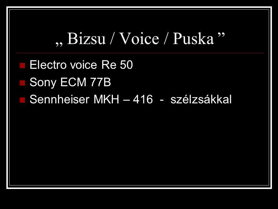 """"""" Bizsu / Voice / Puska Electro voice Re 50 Sony ECM 77B Sennheiser MKH – 416 - szélzsákkal"""