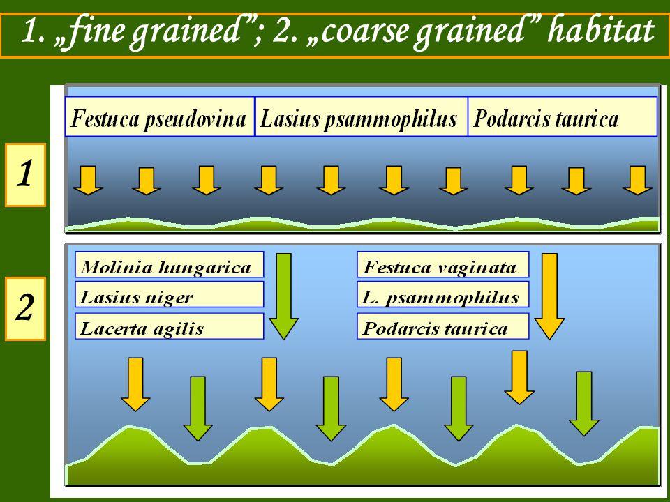 """1. """"fine grained""""; 2. """"coarse grained"""" habitat 1 2"""