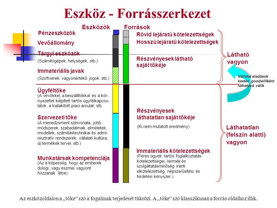 Eszköz - Forrásszerkezet Látható vagyon Láthatatlan (felszín alatti) vagyon Ügyféltőke (A vevőkkel, a beszállítókkal és a kör- nyezettel kiépített tar