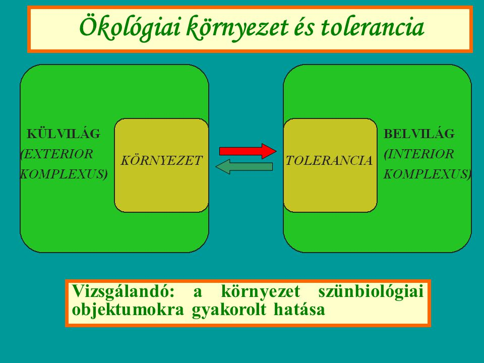Ökológiai környezet és tolerancia Vizsgálandó: a környezet szünbiológiai objektumokra gyakorolt hatása