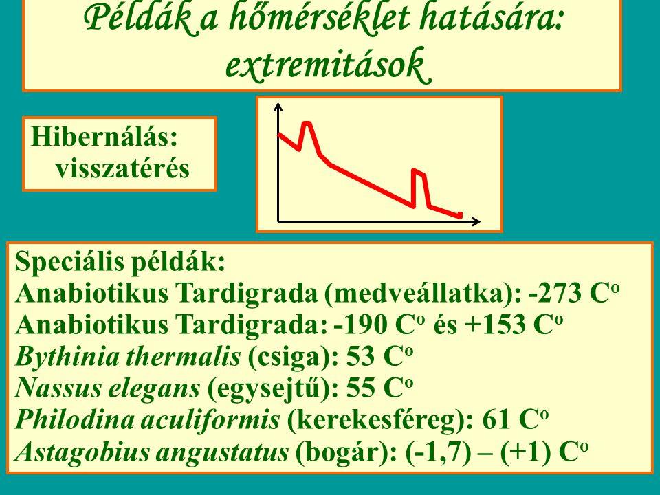 Példák a hőmérséklet hatására: extremitások Hibernálás: visszatérés Speciális példák: Anabiotikus Tardigrada (medveállatka): -273 C o Anabiotikus Tard