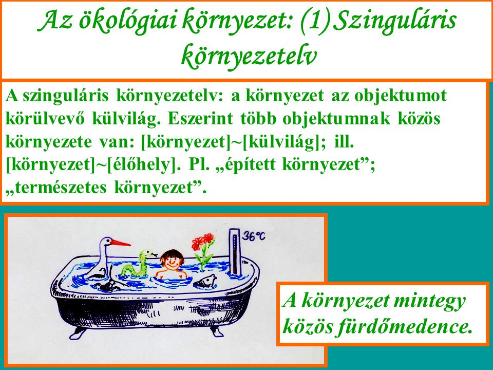 Az ökológiai környezet: (1) Szinguláris környezetelv A szinguláris környezetelv: a környezet az objektumot körülvevő külvilág. Eszerint több objektumn