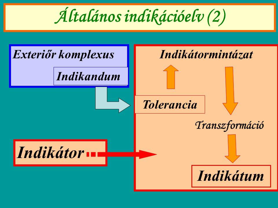 Általános indikációelv (2) Exteriőr komplexus Indikandum Indikátormintázat Indikátum Tolerancia Transzformáció Indikátor