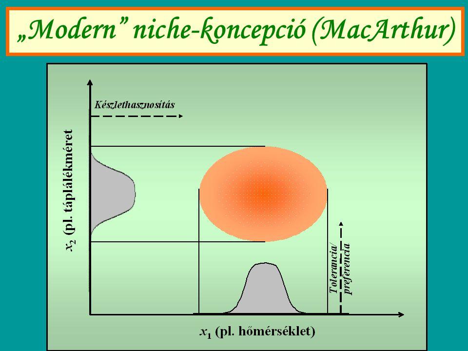 """Modern"" niche-koncepció (MacArthur)"