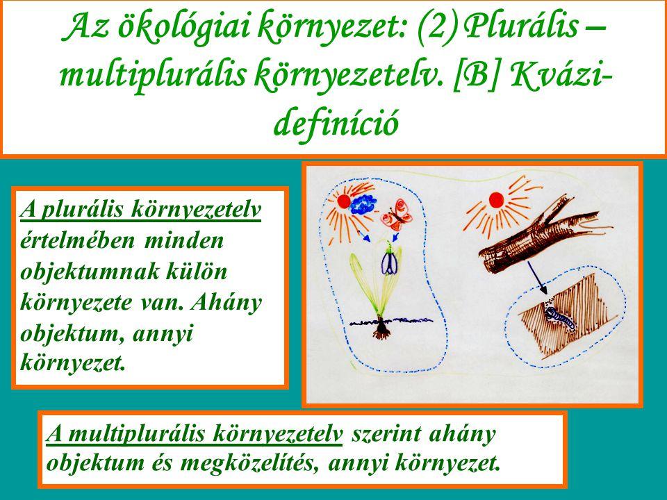 Az ökológiai környezet: (2) Plurális – multiplurális környezetelv. [B] Kvázi- definíció A plurális környezetelv értelmében minden objektumnak külön kö