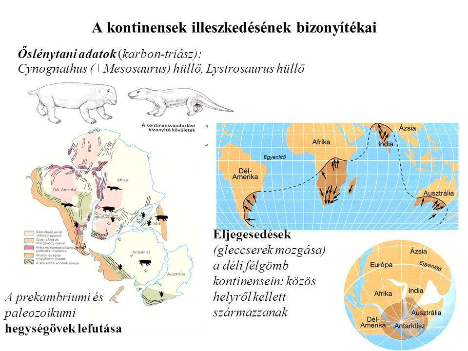 A kontinensek illeszkedésének bizonyítékai Őslénytani adatok (karbon-triász): A prekambriumi és paleozoikumi hegységövek lefutása Eljegesedések (glecc