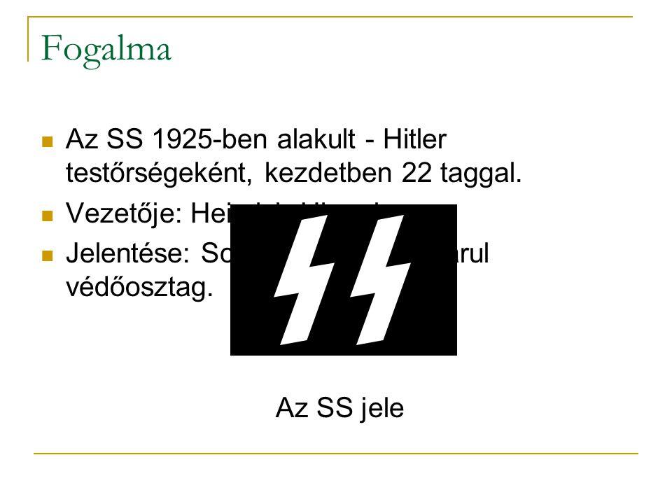 Fogalma Az SS 1925-ben alakult - Hitler testőrségeként, kezdetben 22 taggal. Vezetője: Heinrich Himmler Jelentése: Schutzstaffel, magyarul védőosztag.