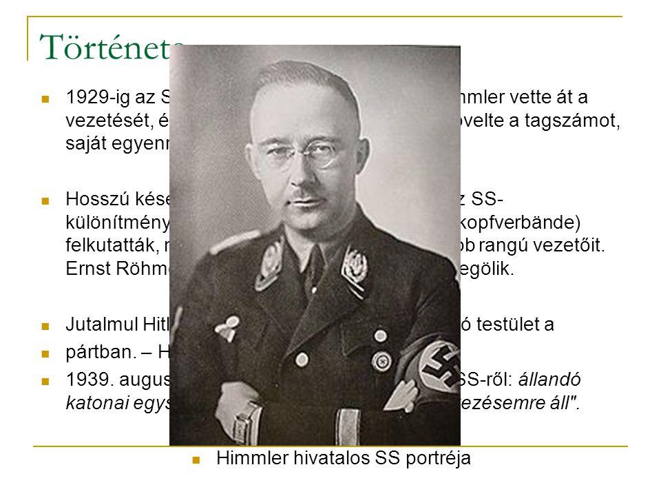 1929-ig az Sahoz tartozott, azonban ekkor Himmler vette át a vezetését, és kitüntetetten kezelte az SS-t. (növelte a tagszámot, saját egyenruha, és ra