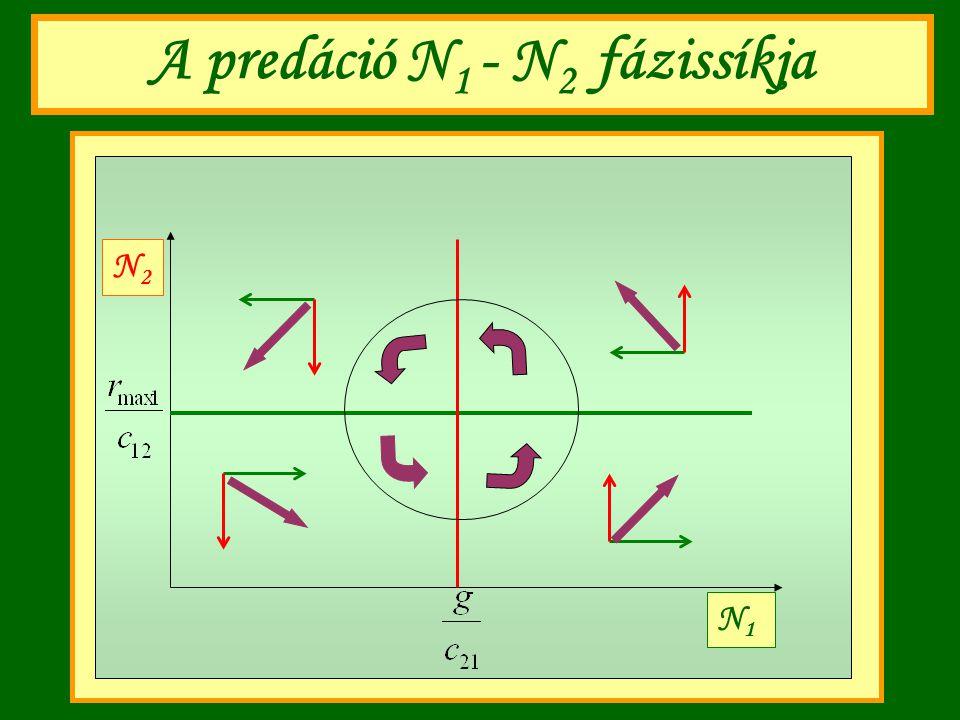 A predáció N 1 - N 2 fázissíkja N1N1 N2N2
