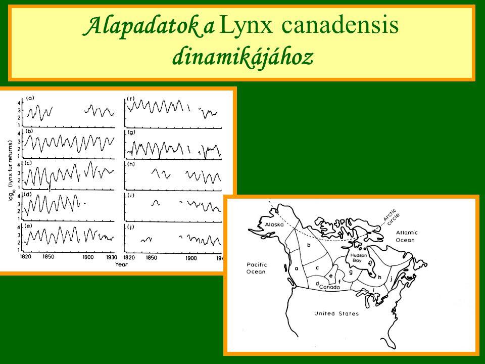 Alapadatok a Lynx canadensis dinamikájához