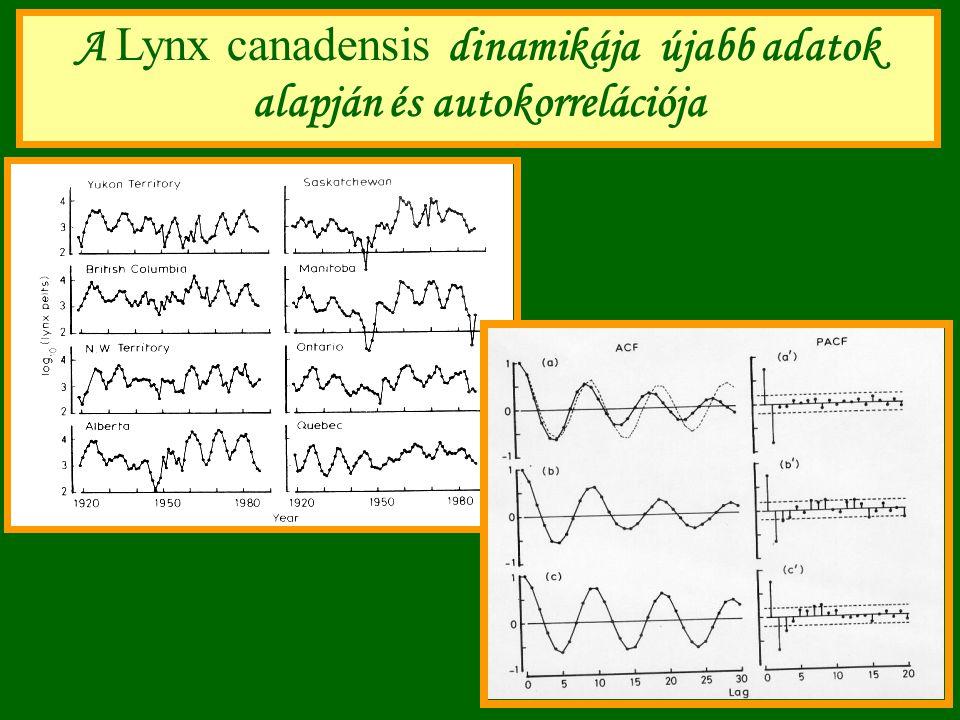 A Lynx canadensis dinamikája újabb adatok alapján és autokorrelációja
