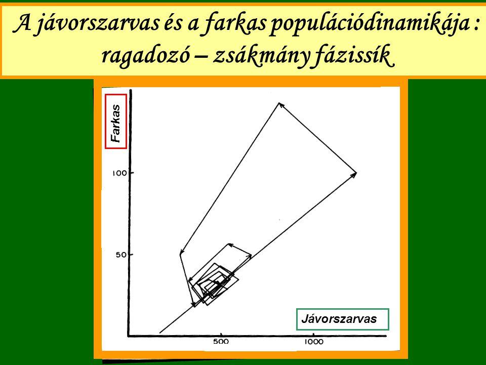 A jávorszarvas és a farkas populációdinamikája : ragadozó – zsákmány fázissík Jávorszarvas Farkas