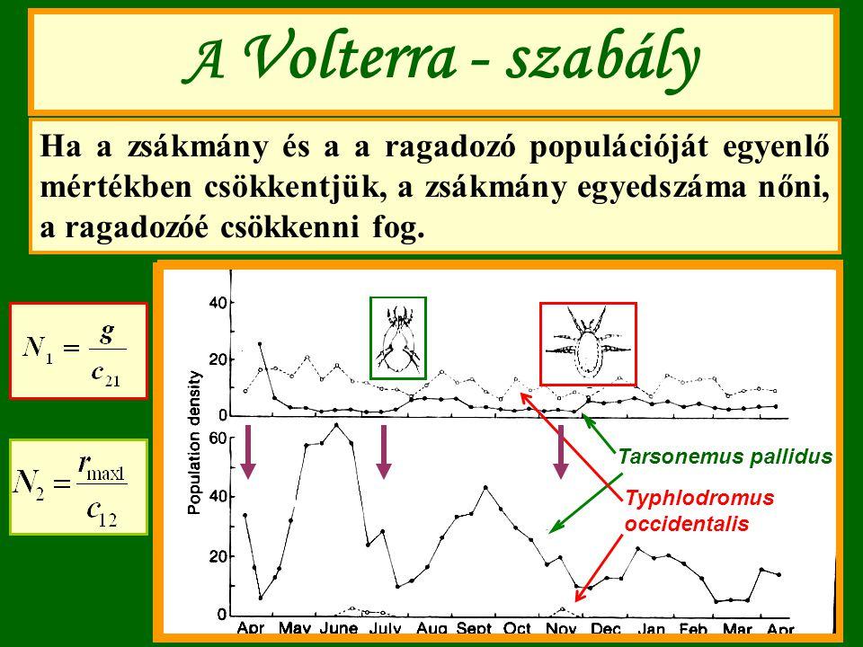 A Volterra - szabály Ha a zsákmány és a a ragadozó populációját egyenlő mértékben csökkentjük, a zsákmány egyedszáma nőni, a ragadozóé csökkenni fog.