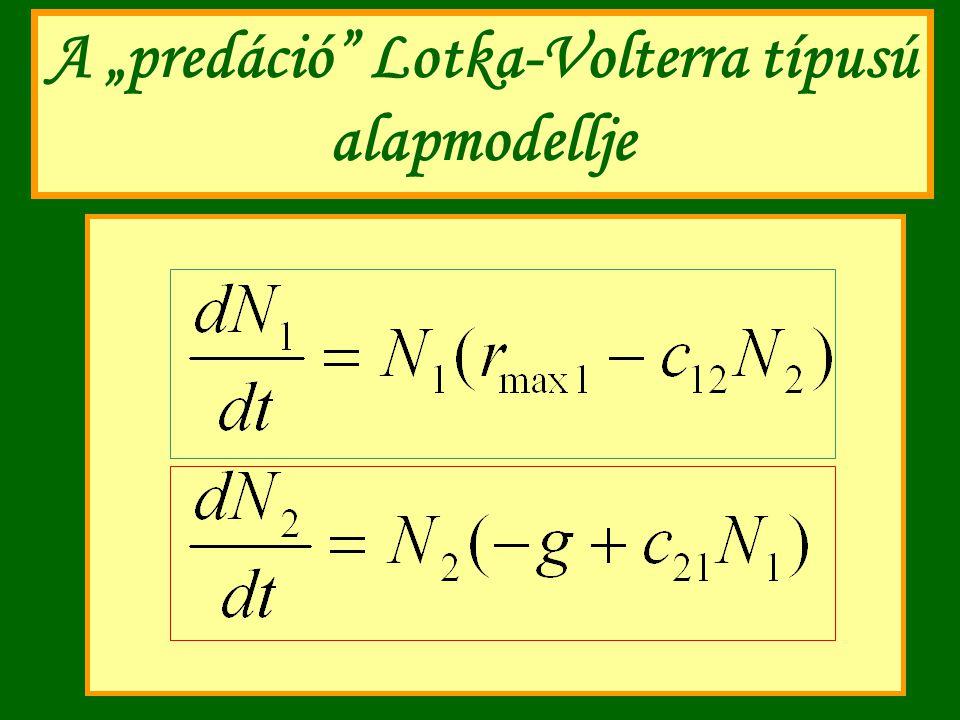 """A """"predáció"""" Lotka-Volterra típusú alapmodellje"""
