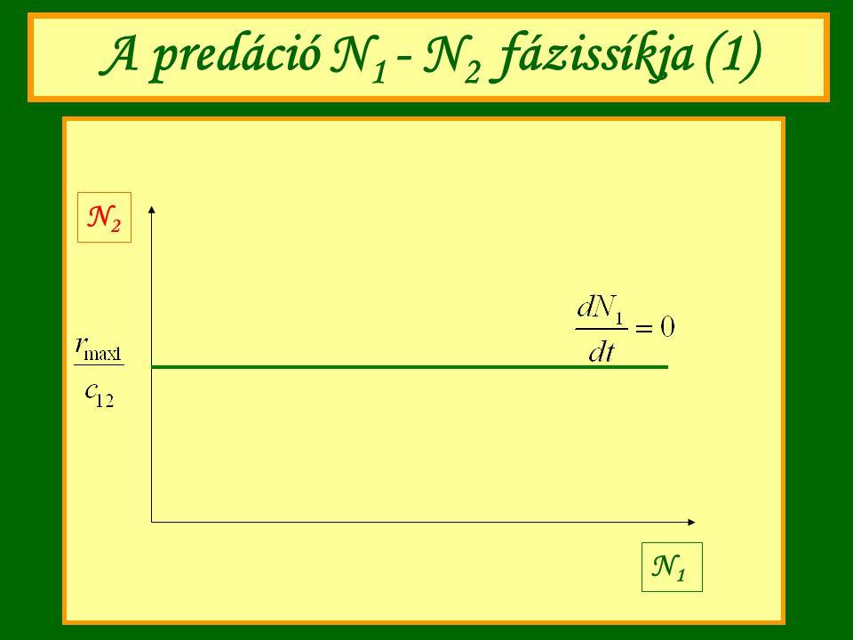 A predáció N 1 - N 2 fázissíkja (1) N1N1 N2N2