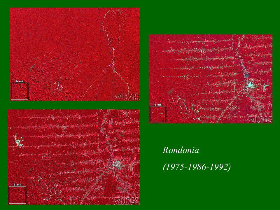 Rondonia (1975-1986-1992)