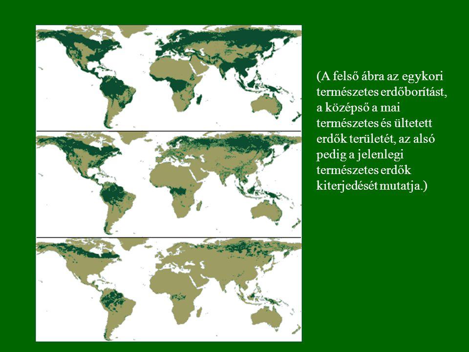 (A felső ábra az egykori természetes erdőborítást, a középső a mai természetes és ültetett erdők területét, az alsó pedig a jelenlegi természetes erdők kiterjedését mutatja.)