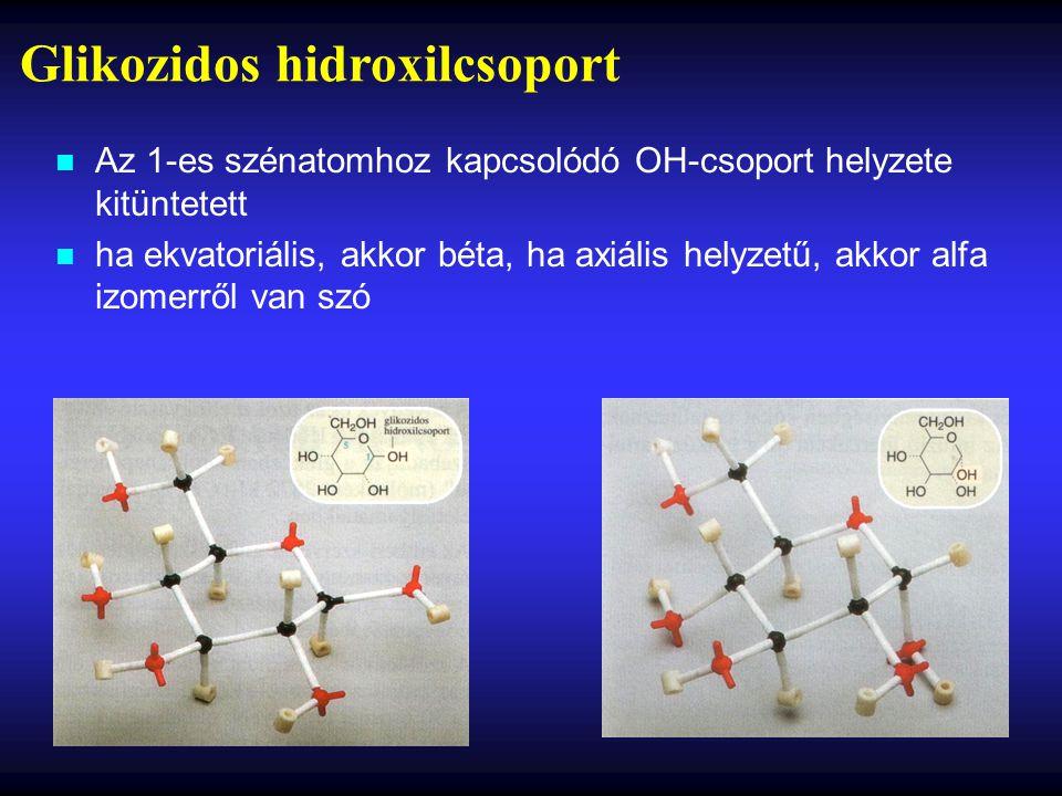 Glikozidos hidroxilcsoport n Az 1-es szénatomhoz kapcsolódó OH-csoport helyzete kitüntetett n ha ekvatoriális, akkor béta, ha axiális helyzetű, akkor