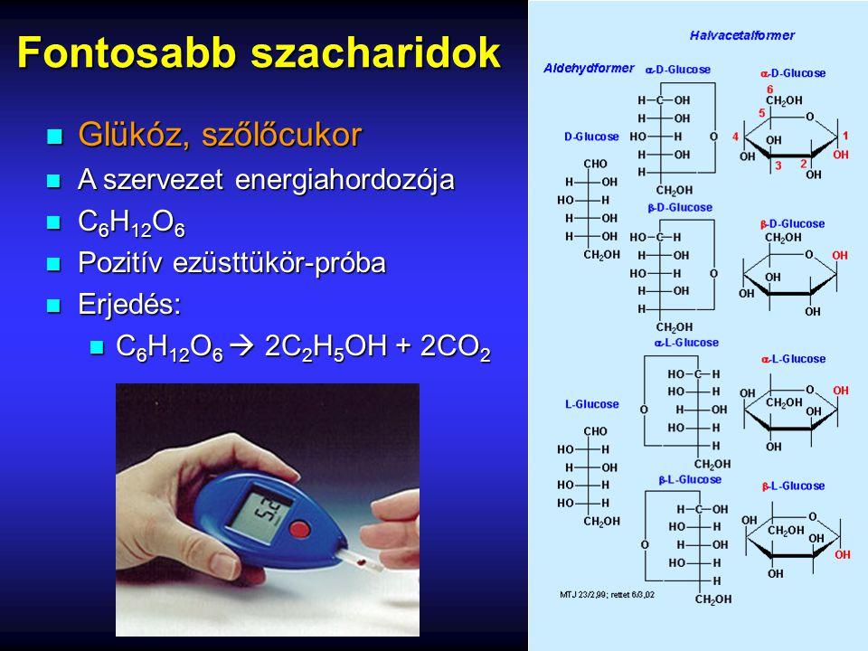 Fontosabb szacharidok n Glükóz, szőlőcukor n A szervezet energiahordozója n C 6 H 12 O 6 n Pozitív ezüsttükör-próba n Erjedés: n C 6 H 12 O 6  2C 2 H
