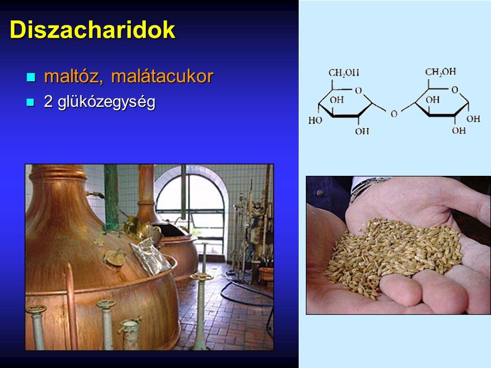 Diszacharidok n maltóz, malátacukor n 2 glükózegység