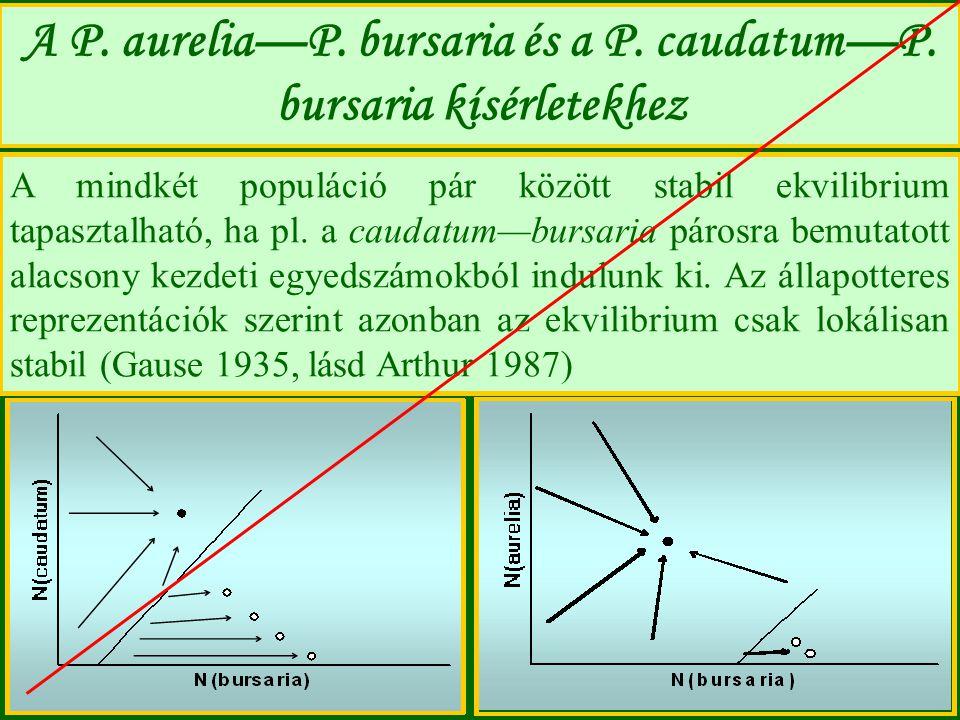 A P. aurelia—P. bursaria és a P. caudatum—P. bursaria kísérletekhez A mindkét populáció pár között stabil ekvilibrium tapasztalható, ha pl. a caudatum