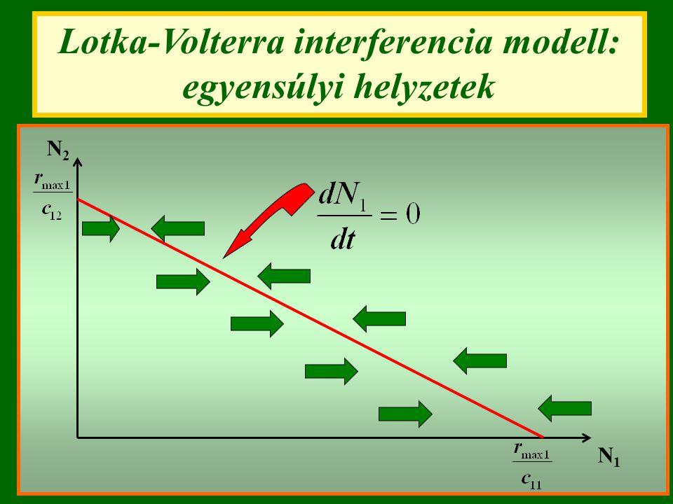 Lotka-Volterra interferencia modell: egyensúlyi helyzetek N1N1 N2N2