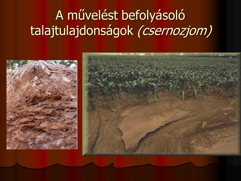 A talajművelés irányelvei (csernozjom)  A talaj természetes lazultsága, ill.